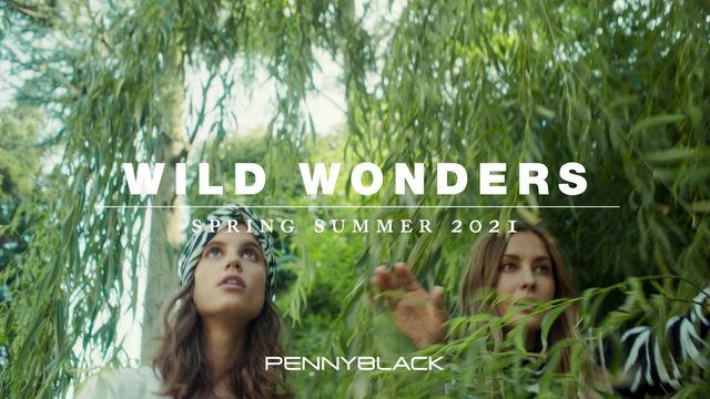 Pennyblack: Wild Wonders