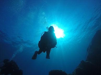 Plongée sous marine avec Cap Ferrat Diving