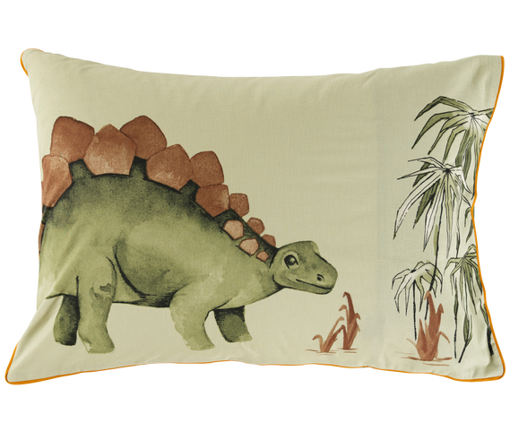 dinotopi-taie-americaine-recto-1954.png