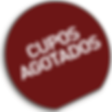agotado-01_edited_edited.png