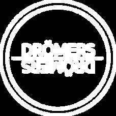 logo_DROMER_transparent.png