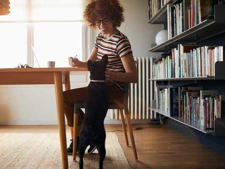 Are We More Productive Working From Home?