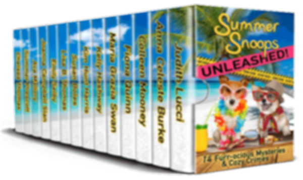 Summer Snoops Unleashed Box Set