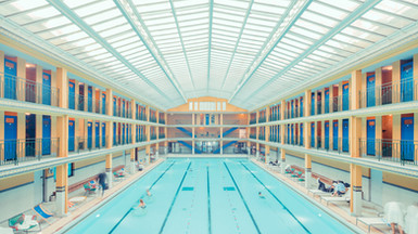 Shush Monthly 1: Isle of Gods: the dazzling Wes Anderson