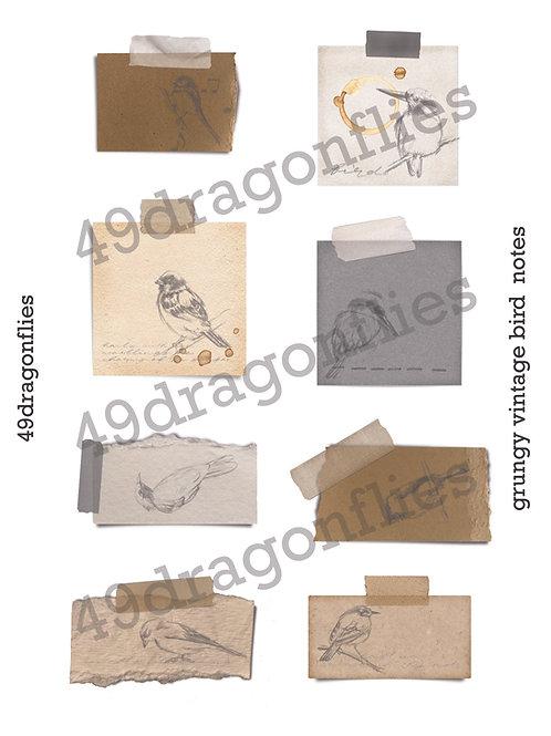 Grungy Vintage Bird Notes