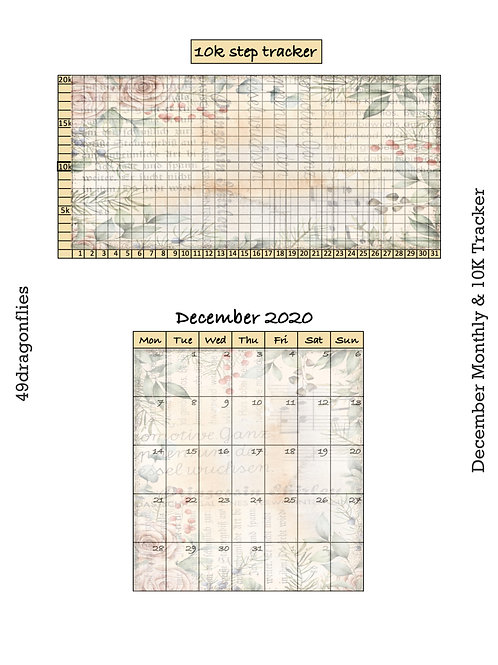 December 2020 Monthly and 10K Step Tracker