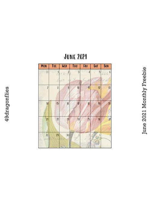 Monthly, Generic Habit Tracker, 10K Tracker June 2021 Freebie