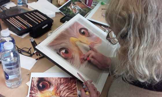 TINDALL'S WORKSHOP –  ANIMAL PORTRAITS IN PASTEL – ELY 27 MARCH 2018