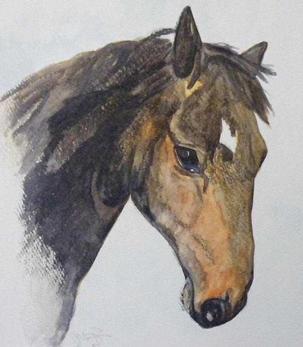 Horsehead Watercolour.jpg