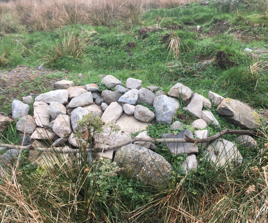 Rock bank for lizards created with rocks found while digging ponds.