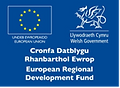Welsh Government 1.png
