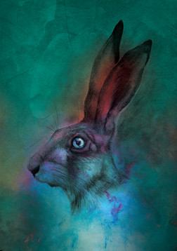 March hare 2019.jpg