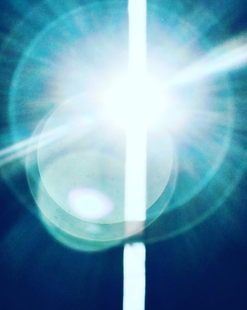 Undiminished We Shine