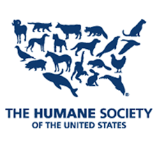 Sex, Lies and Animal Lives: Humane Society of the US Faces Investigation
