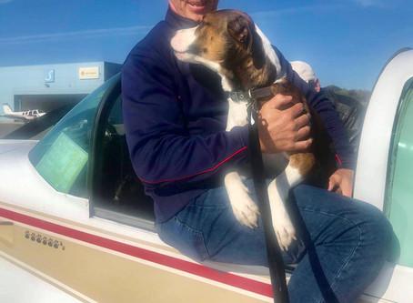 A 2 dog Pick up for CrisisDogsNC Freedom Flight