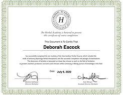 Intermediate-certificate copy.jpg