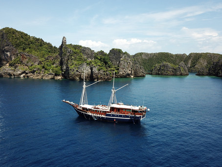 Check Out Bluewater's Raja Ampat Diving Trips | Scuba Diving Blog