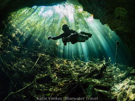 Why You Should Try A Cenotes Dive | Scuba Diving Blog