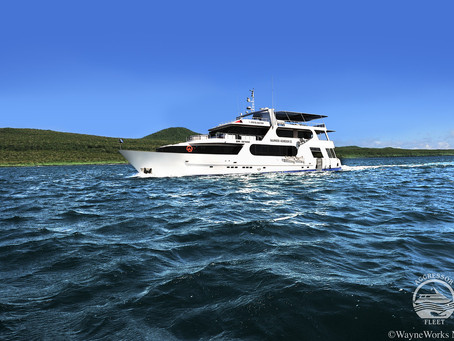 Great Deals on the Galapagos Aggressor | Scuba Diving Blog