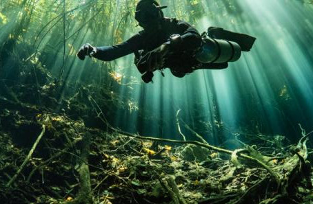 Five Things You Didn't Know About the Cenotes | Scuba Diving Blog