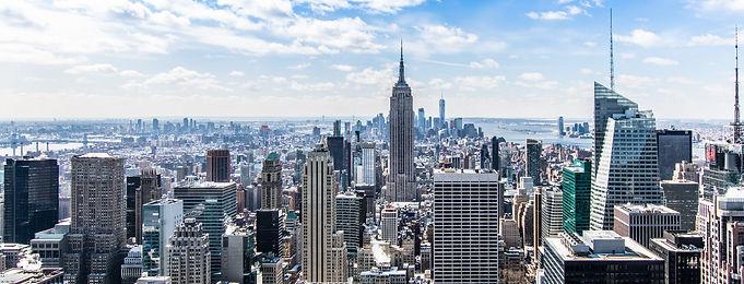 Pearlene Fields - NYC Skyline - BLUE - edit - Pexels.jpg