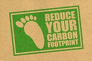 reduce-carbon-footprint.jpg
