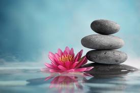 Chassez le stress avec la pleine Conscience