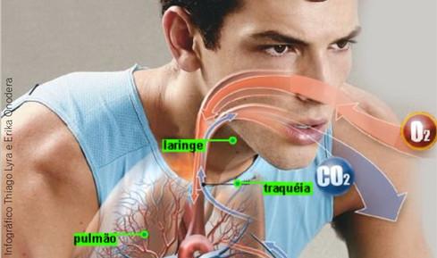 Dor e Respiração: Uma Revisão Sistemática parte: 01