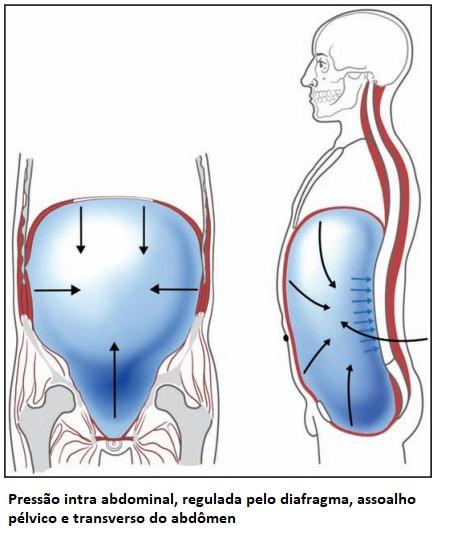 Função Postural do Diafragma