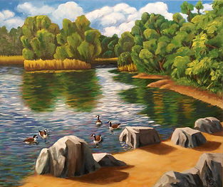 Rocks and Geese at Toogood Pond 2018 20