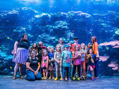 georgia aquarium field trip atlanta