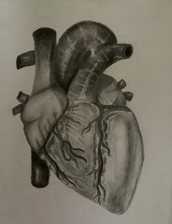 AP Art 5