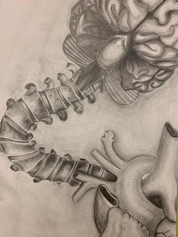 AP Art 3