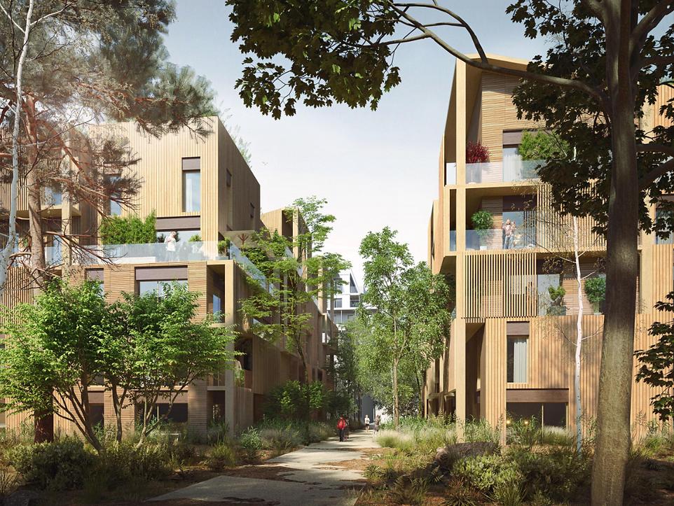 Modélisation 3D des Logements sous le signe du bois à Vélizy-Villacoublay