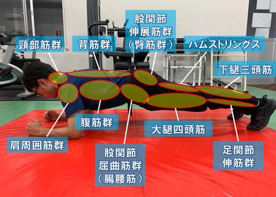 体幹トレーニング~BBトレーニングpart1~