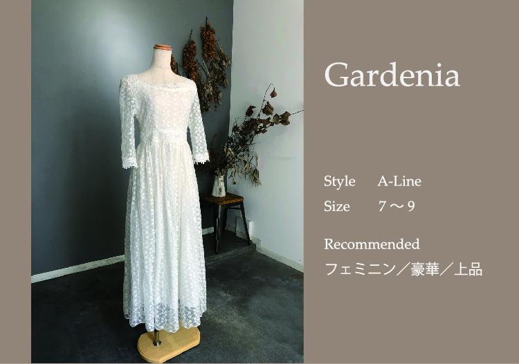 Gardeniaサムネイル