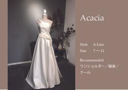 Acaciaサムネイル