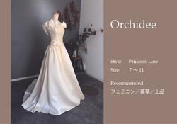 Orchideeサムネイル