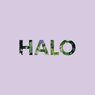 HALO - JESS LOCKE [2021]