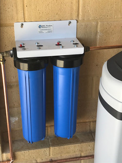 In line water filter