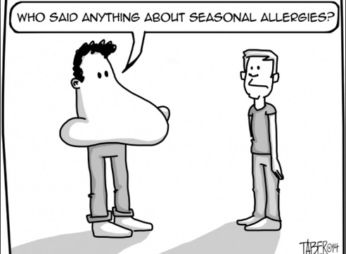 Scratch + sniffles: The links between seasonal allergies, asthma and eczema