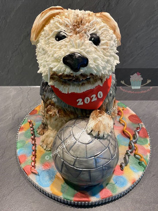 AC-120-2020-Dog-Celebration-Anniversary-Cake