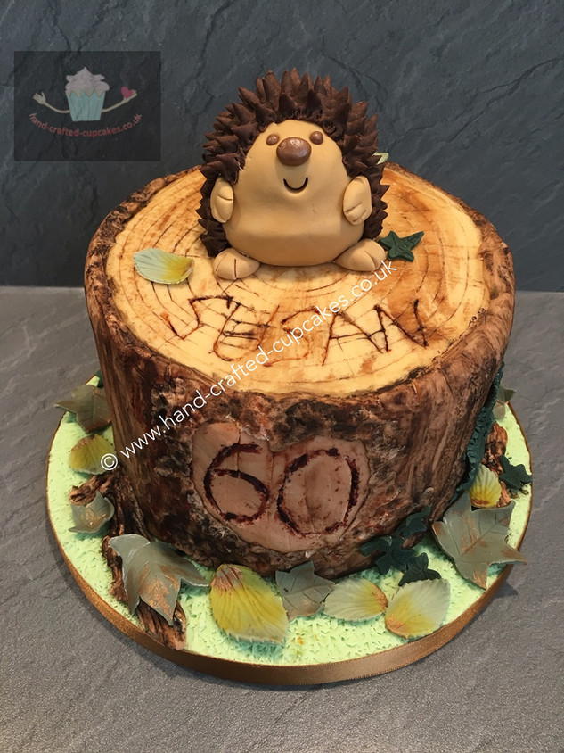 TAC-190-Hedgehog-Log-Cake