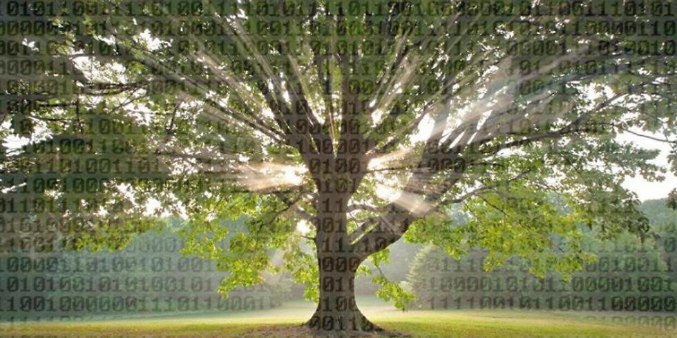 Collaboration Tree Hackathon - Online