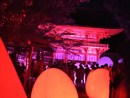 Shimogamo Shrine Light Up Event
