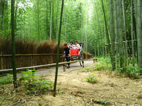 A New Path for RIKISHA in ARASHIYAMA