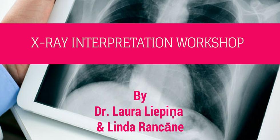 X-ray interpretation workshop