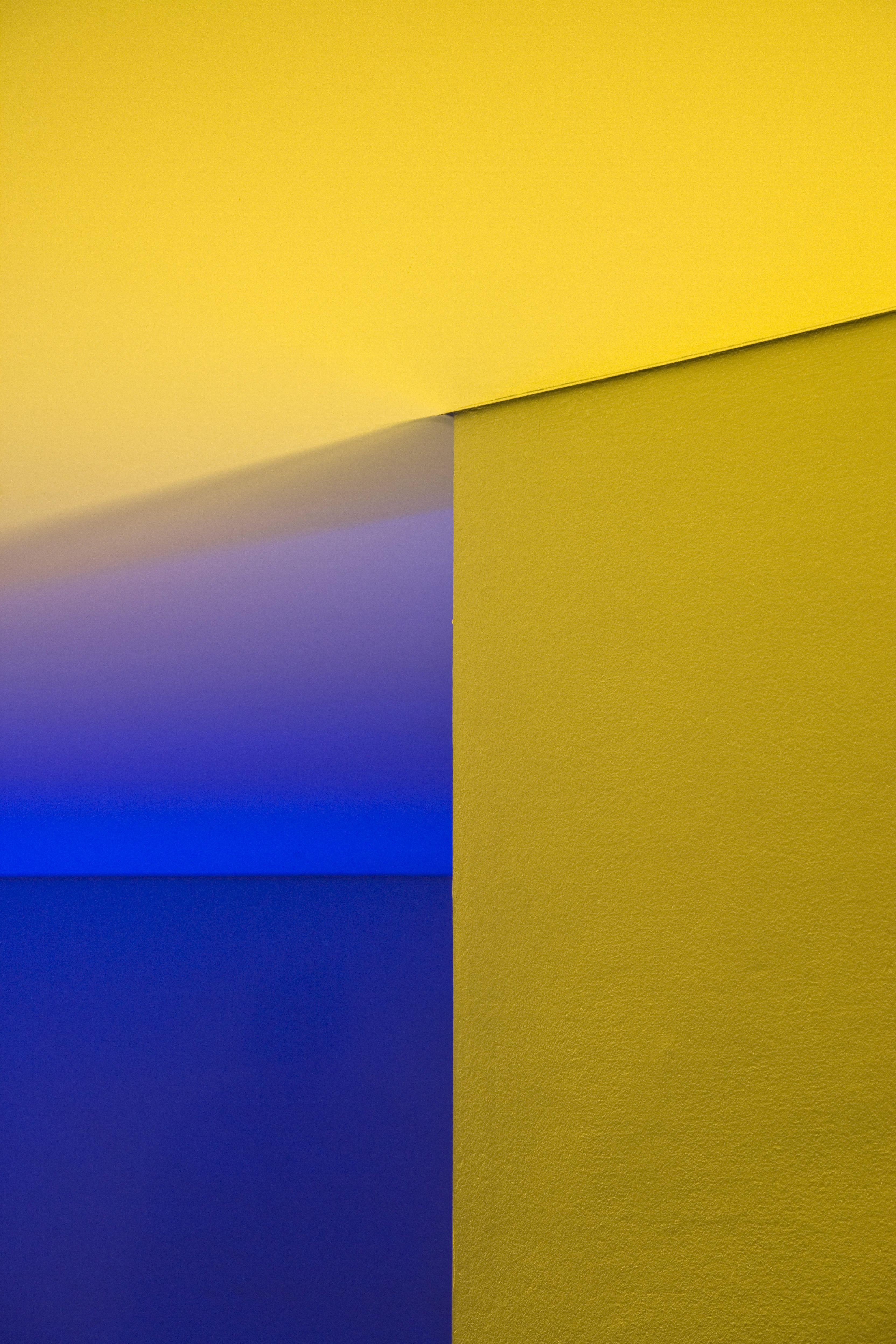 Colorelativity
