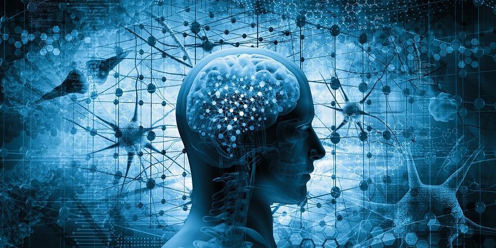 MINDSET | Kognitive Agilität im Denken, Sprechen und Handeln
