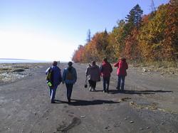 Promenade sur la plage du Sud